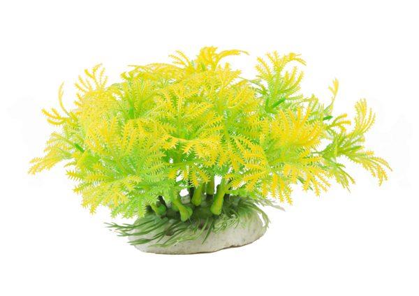 Planta Decorativa para Acuarios y Tortugueras