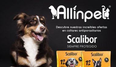 Promoción de Antiparasitarios en Allinpet.com