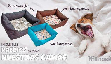 Camas Resistentes, Hipoalergénicas, Transpirables y Desenfundables para Mascotas al Mejor Precio!!