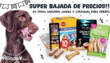 Por Fin Llega lo Esperado!!, Inmejorables Descuentos en Snacks y Chuches para Nuestras Mascotas de Allinpet.com!!!