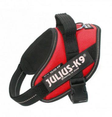 Julius-K9 Rojo Talla Mini-Mini