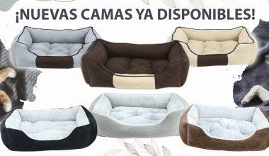 Nuevas Camas Confort, Disponibles en Nuestra Tienda Online